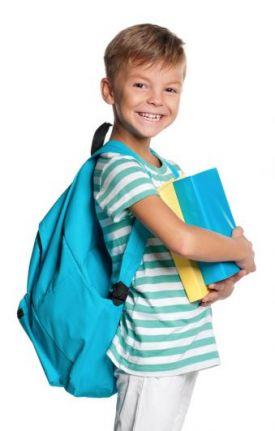 backpack landau